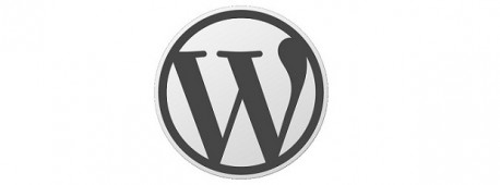 Создаем плагин для WordPress.